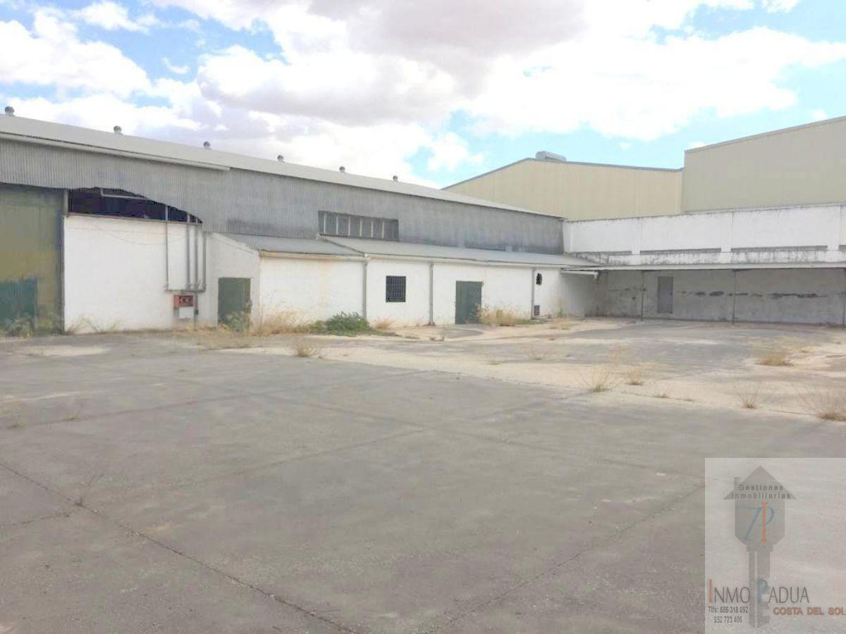 For sale of industrial plant/warehouse in Mollina
