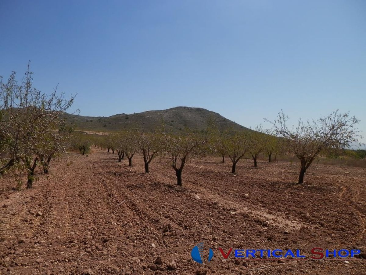 For sale of rural property in Caudete