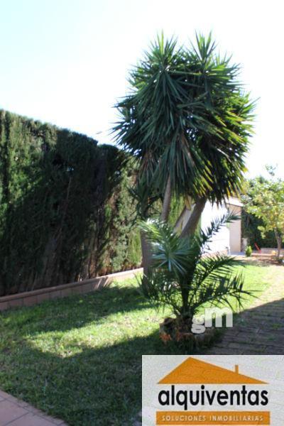 For sale of chalet in Marratxí