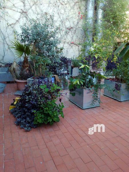 For sale of commercial in Cheste