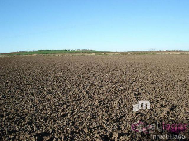 Venta de terreno en Montijo