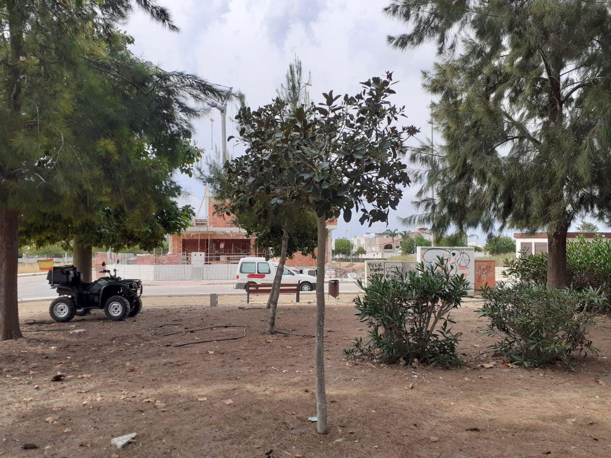 For sale of land in Dolores