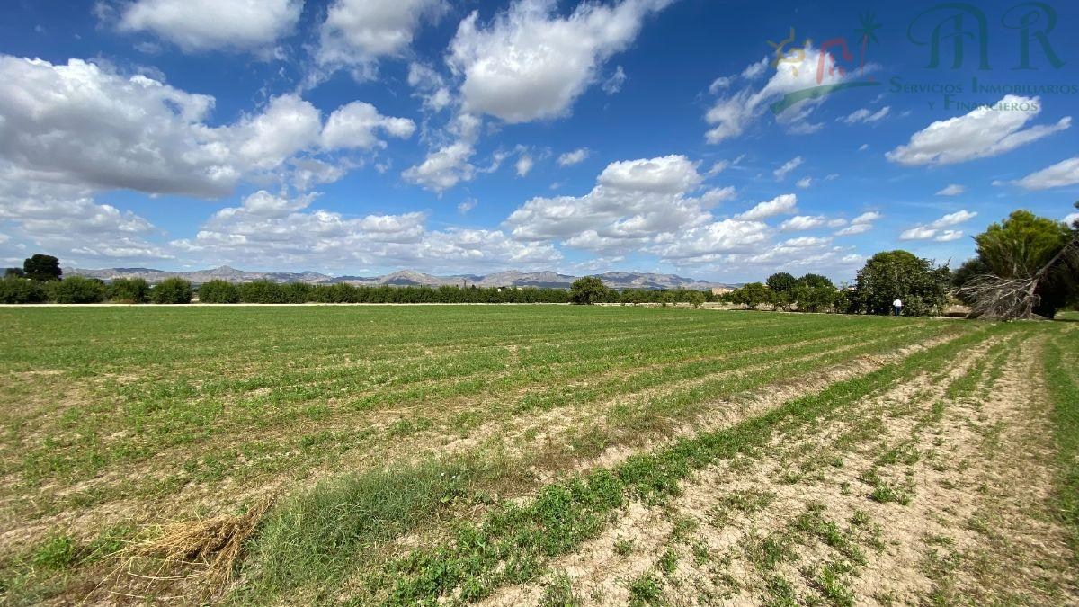 For sale of land in Cox