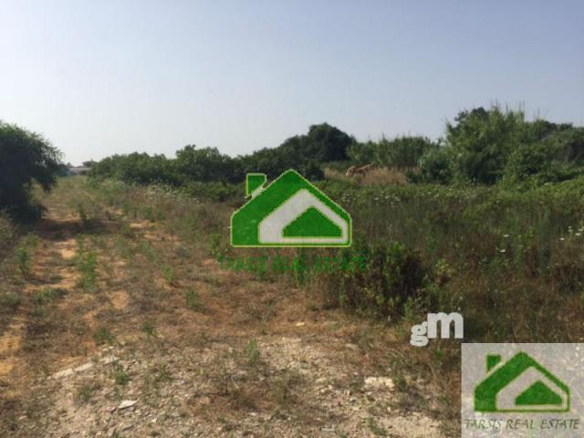 For sale of rural property in Sanlúcar de Barrameda
