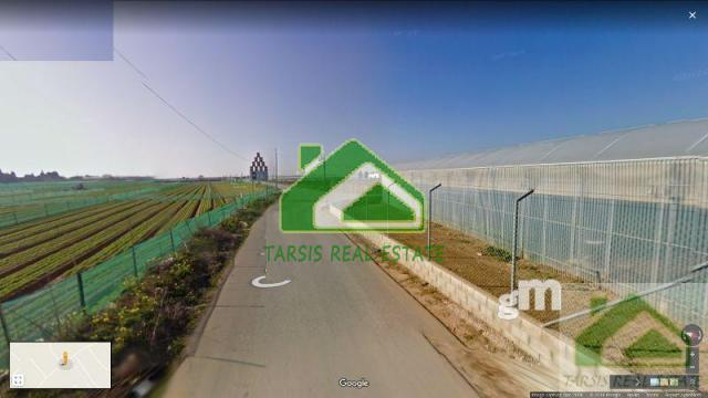 For sale of rural property in Chipiona