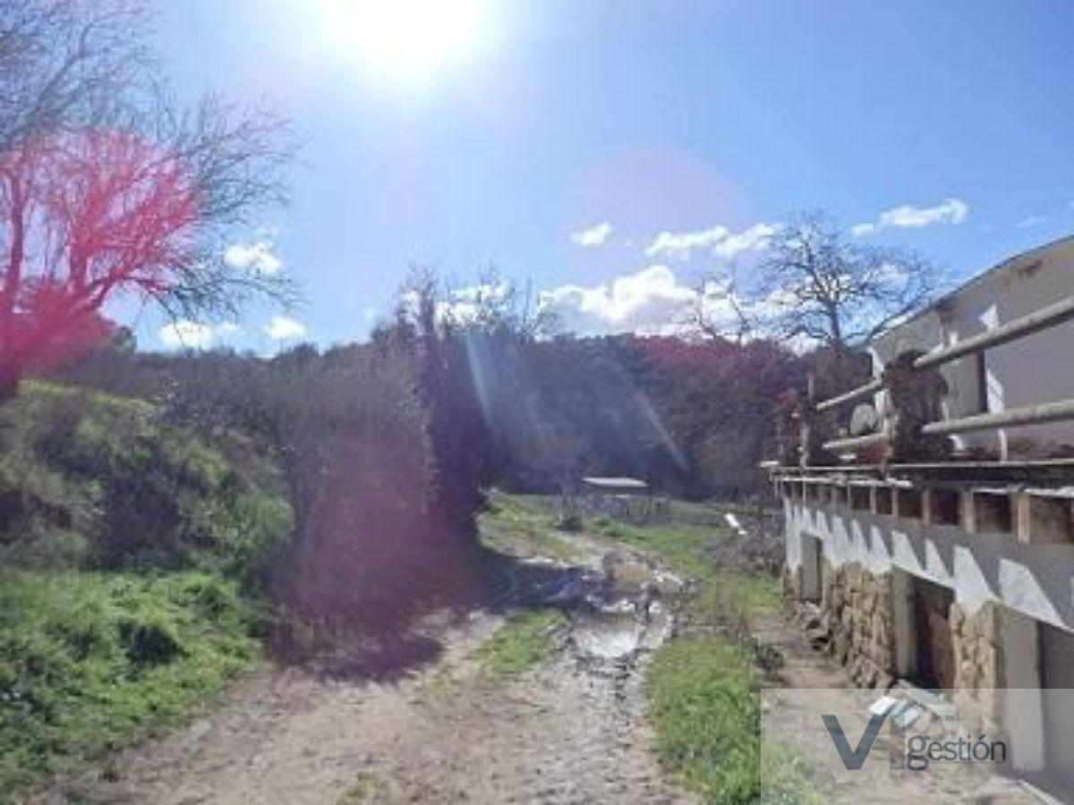 Venta de finca rústica en Setenil de las Bodegas