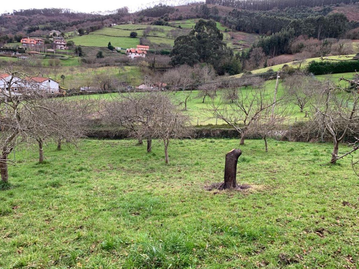 Venta de terreno en Gijón