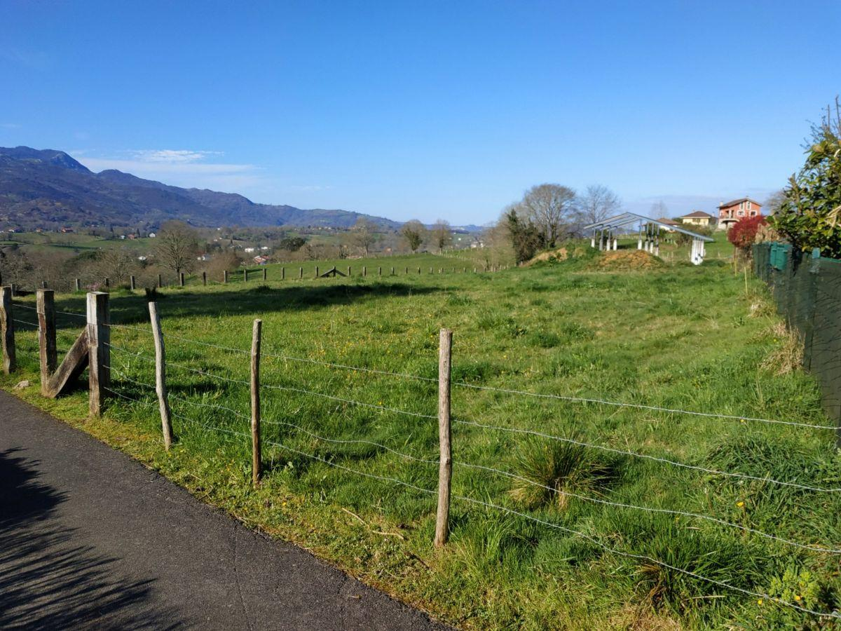 For sale of rural property in Nava