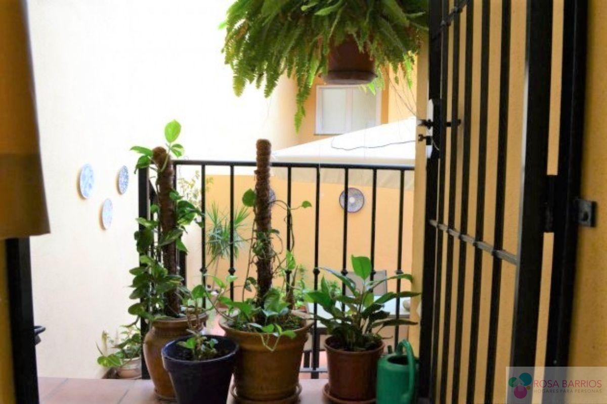 Venta de casa en San Pedro de Alcántara