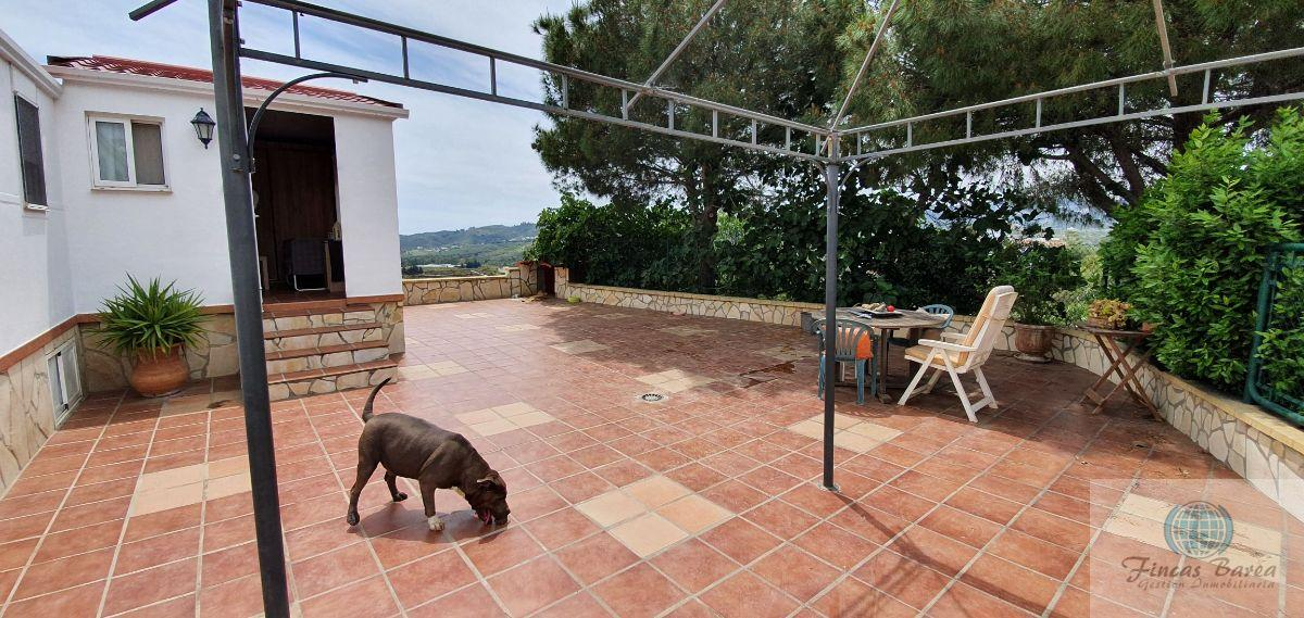For sale of rural property in Mijas