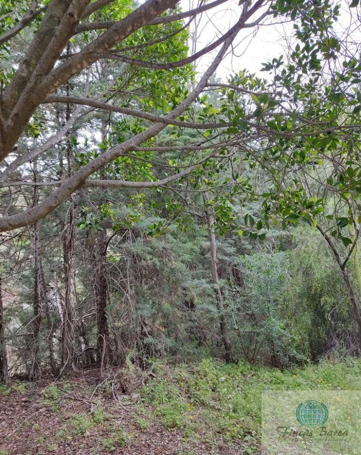 For sale of land in Mijas