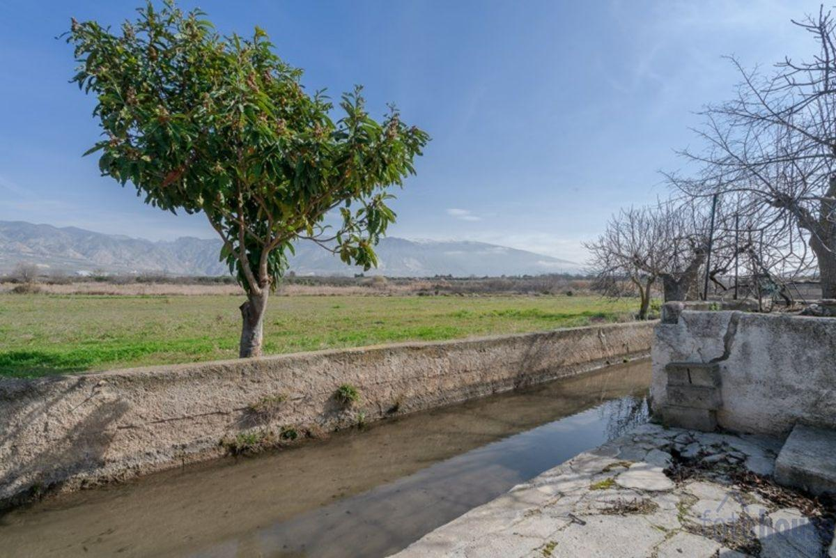For sale of rural property in Padul