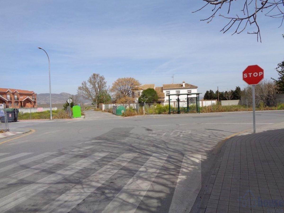 For sale of rural property in Belicena