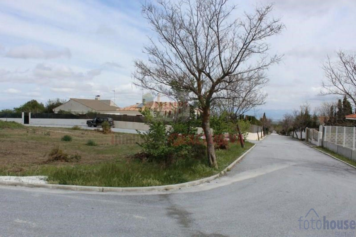 For sale of land in Padul