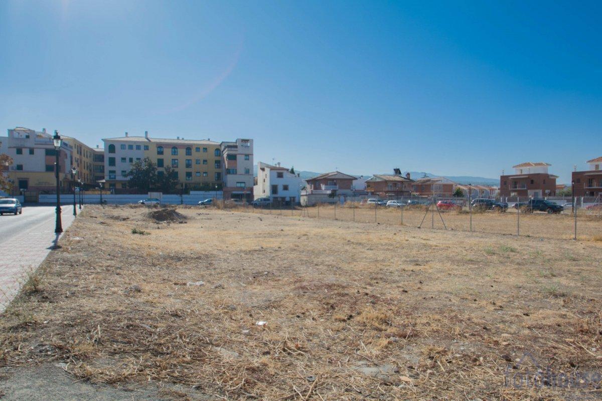 For sale of land in Cájar