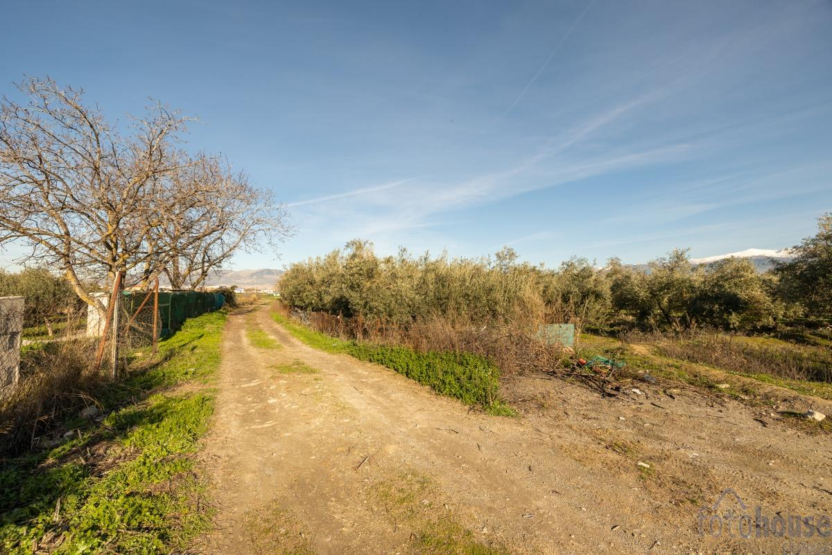 For sale of rural property in Las Gabias