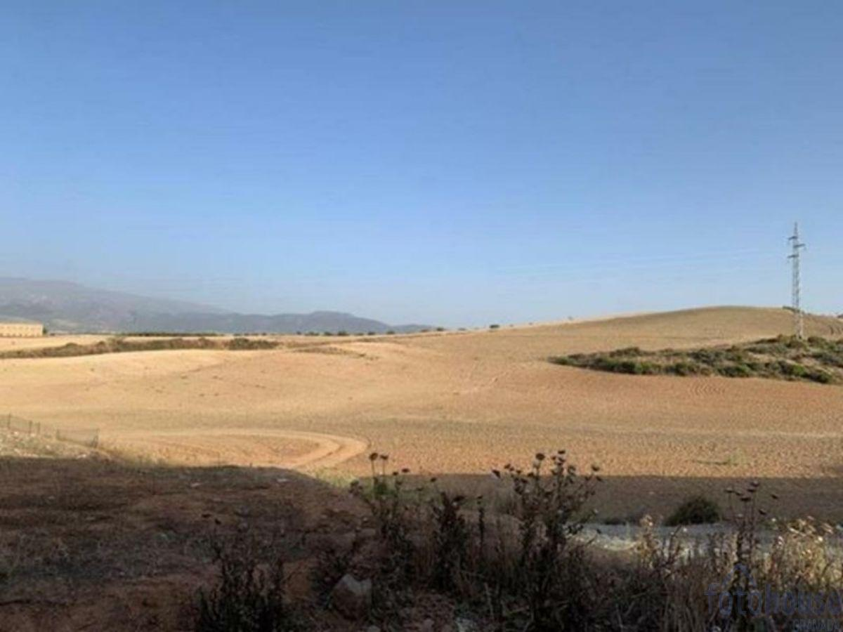 For sale of land in Híjar