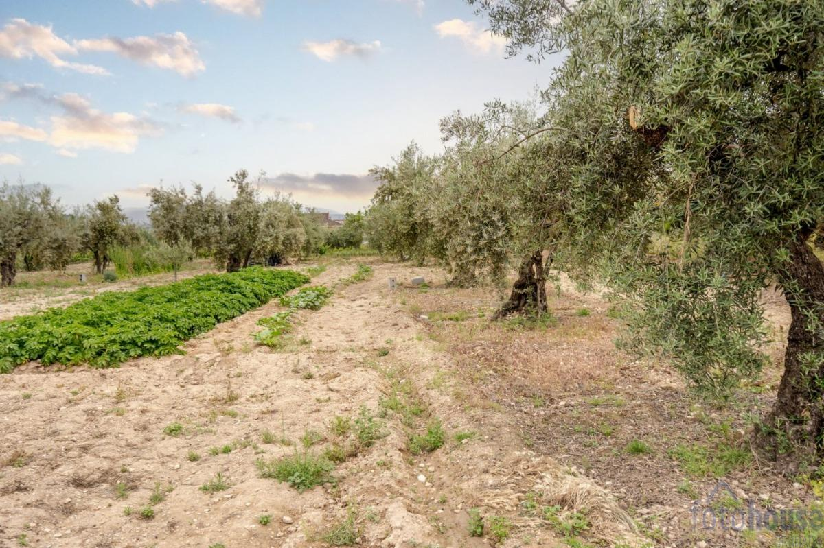 Venta de terreno en Gójar