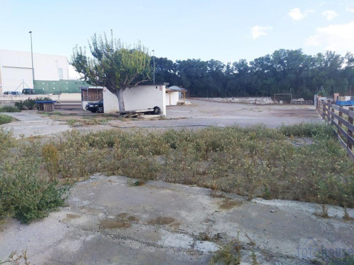 For sale of rural property in Alhendín