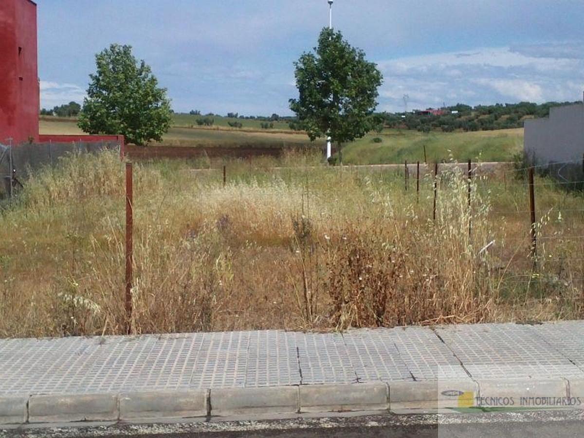 De vânzare din teren în Mérida