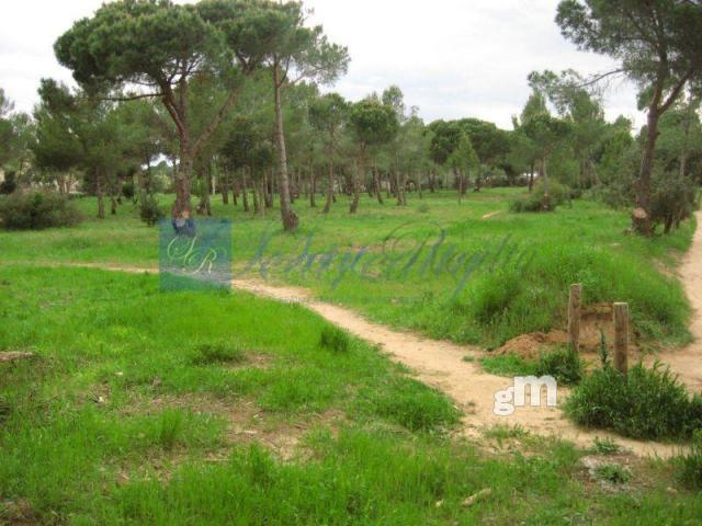 Venta de terreno en Palamós