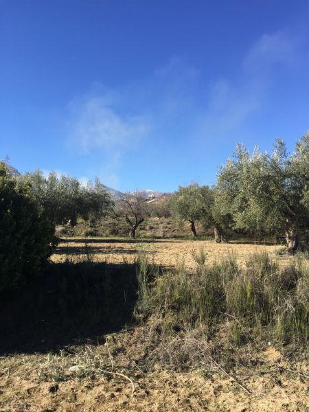Venta de finca rústica en Vélez-Blanco