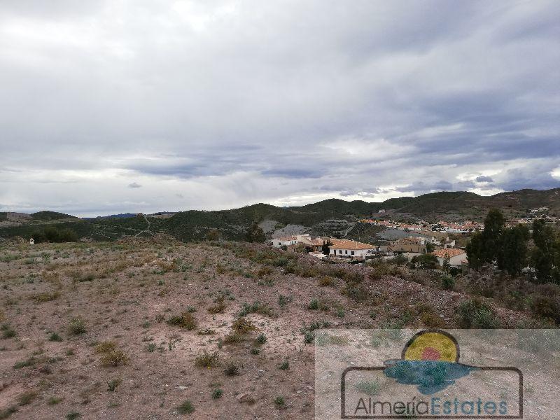 Alquiler de terreno en Arboleas