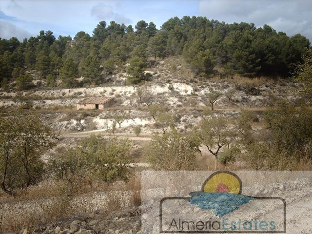For sale of land in María