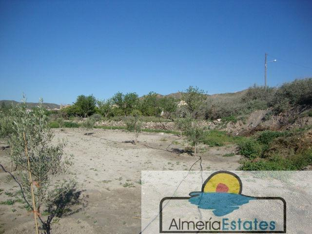 For sale of land in Cantoria