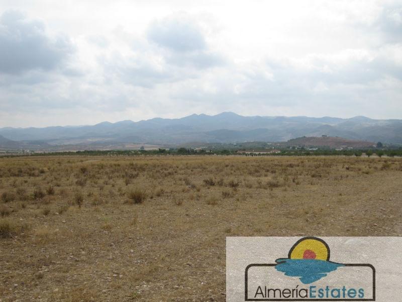 Venta de terreno en Vélez-Rubio