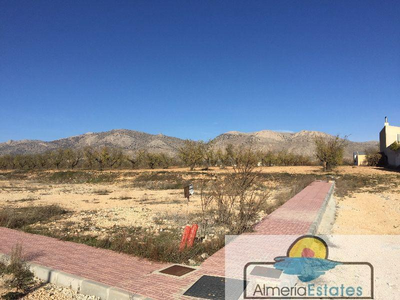 For sale of land in Chirivel