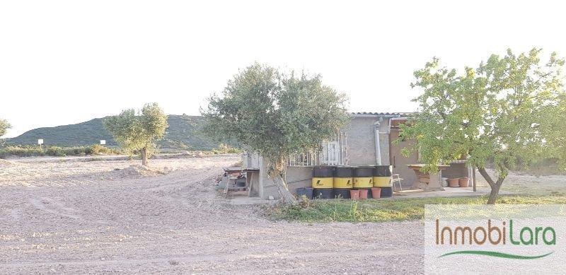 Alquiler de finca rústica en Les Borges Blanques