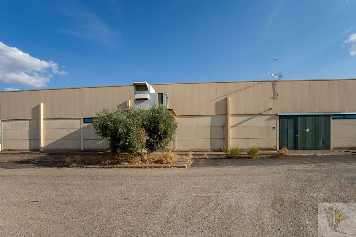 For sale of industrial plant/warehouse in Guadamur