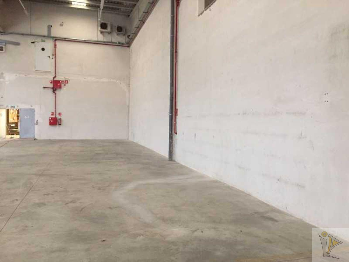 For sale of industrial plant/warehouse in Cabanillas del Campo