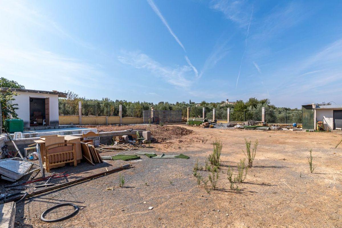 For sale of land in Cogollos de la Vega