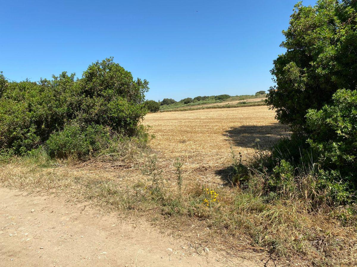 For sale of rural property in Puerto Real