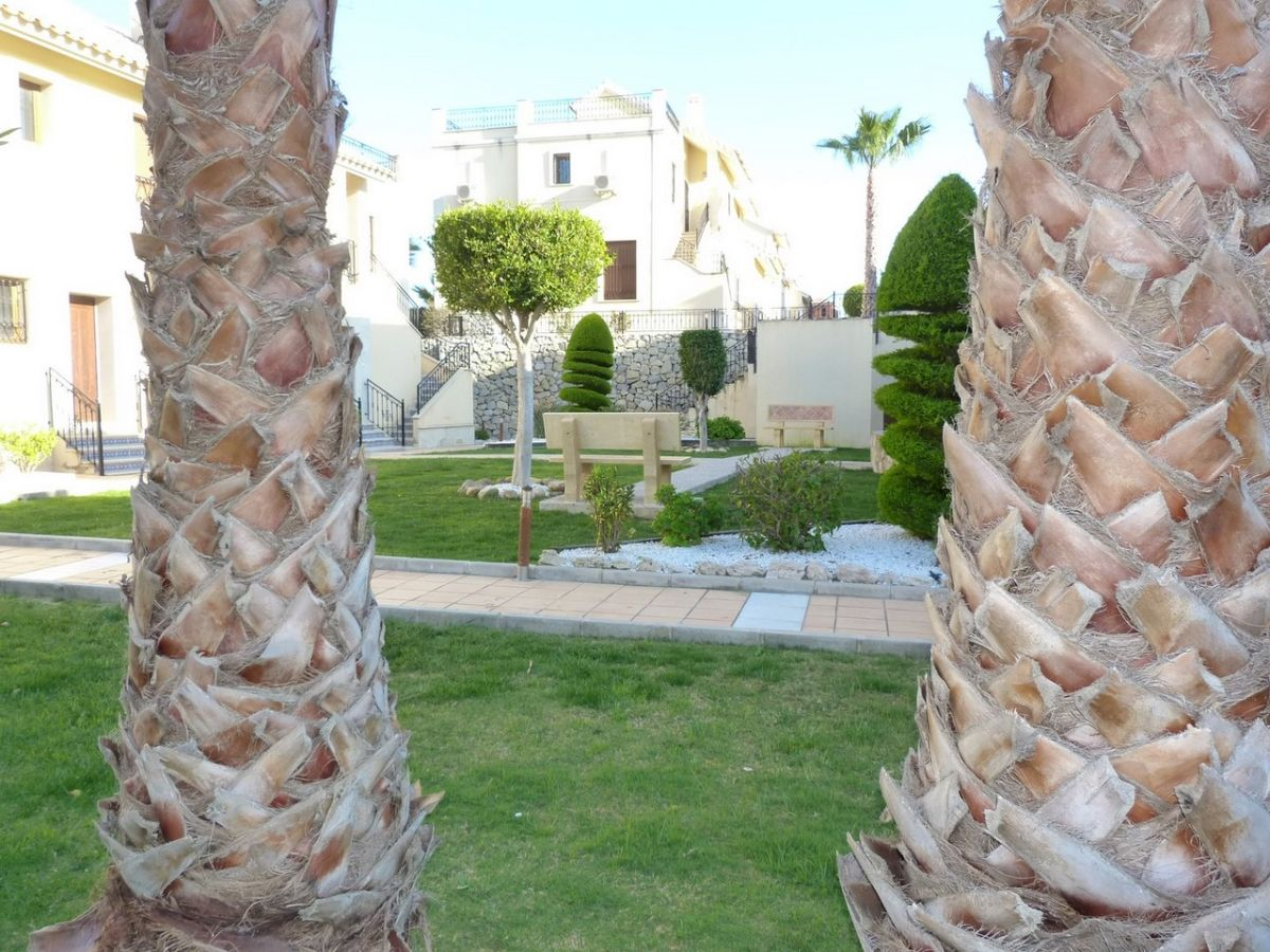 For sale of semidetached in Algorfa