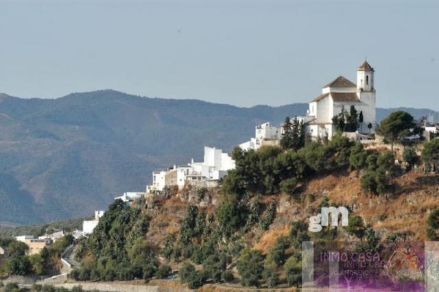 For sale of land in Alozaina