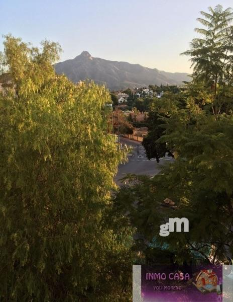 For rent of flat in Nueva Andalucía