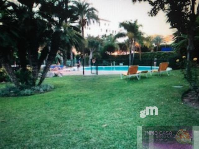 For rent of apartment in Puerto Banús