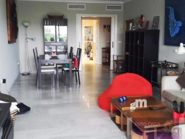 For rent of flat in San Pedro de Alcántara