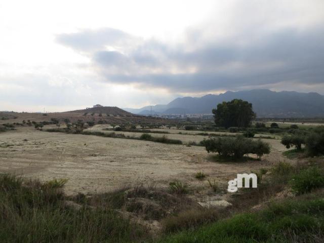 Venta de finca rústica en Los Gallardos
