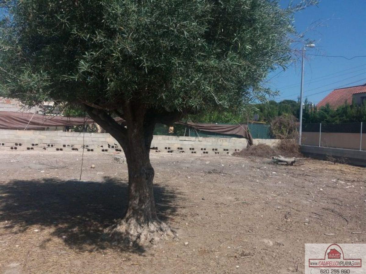 Venta de terreno en Alicante