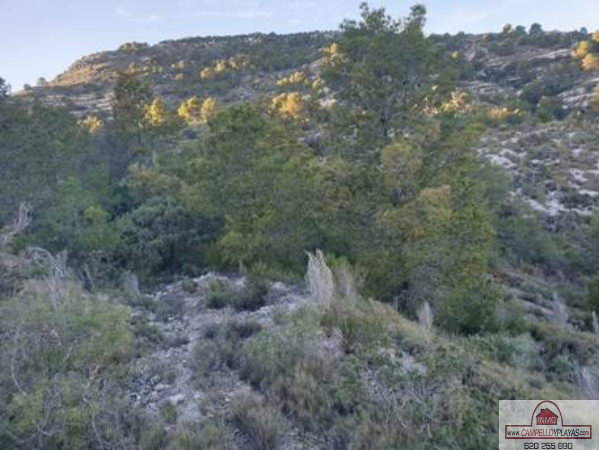 For sale of land in Aigües