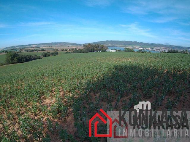 For sale of land in Arcos de la Frontera