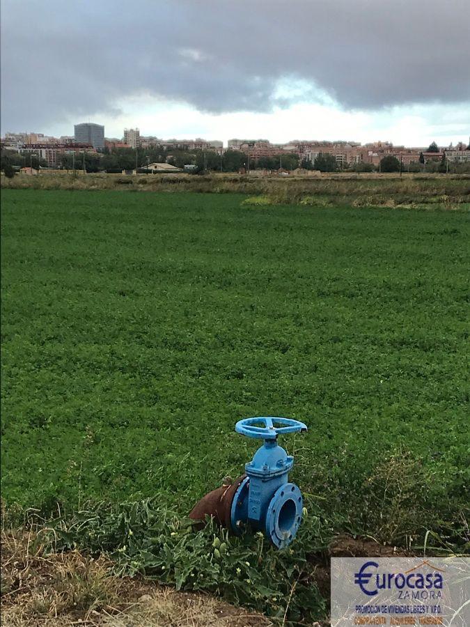 Venta de finca rústica en Zamora