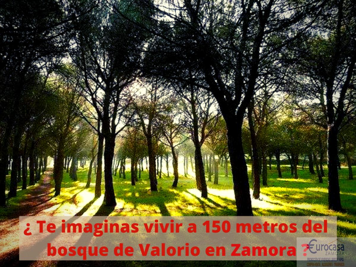 Venta de casa en Zamora