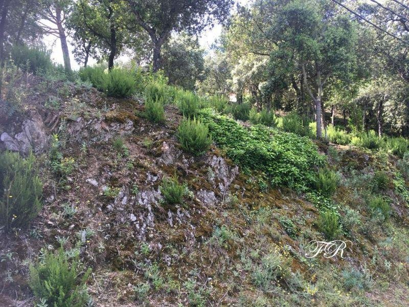 买卖 的 地皮 在 Castellar del Vallès