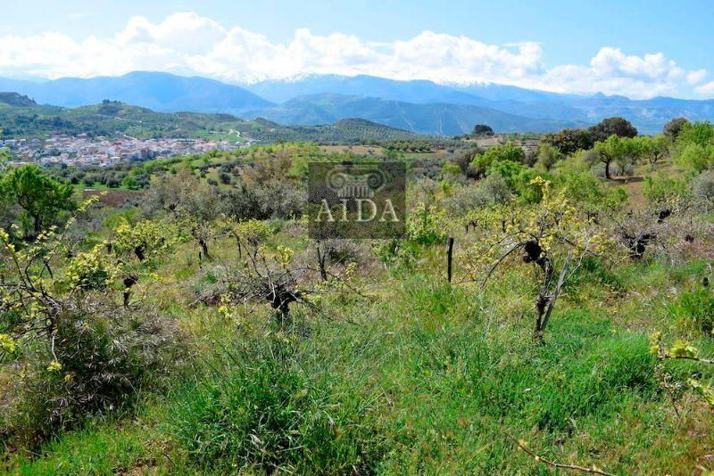 Venta de terreno en Beas de Granada