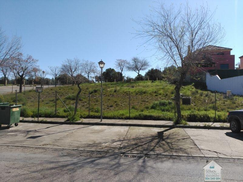 For sale of land in Gelves